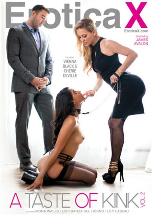 A Taste Of Kink 2 Porn DVD from EroticaX